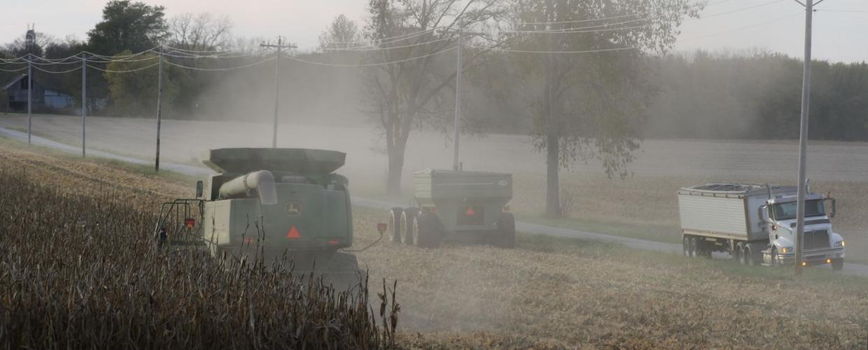 Davis Family Farms